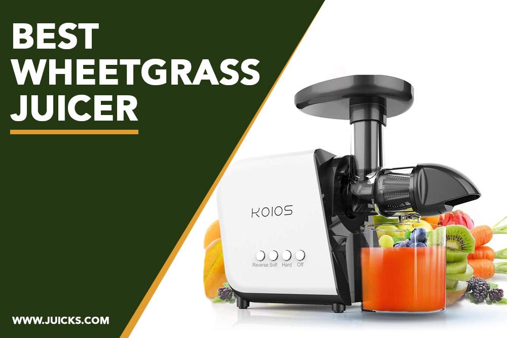 best wheetgrass juicer banner