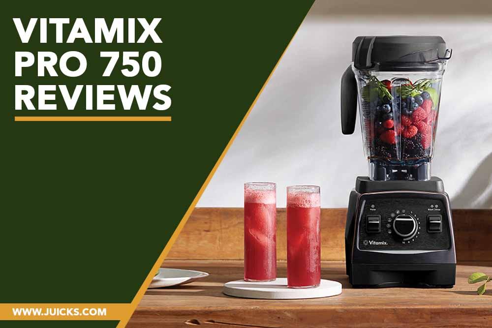 Vitamix pro 750 reviews