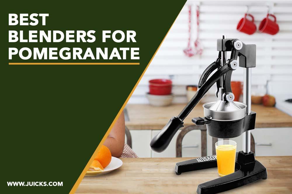 best blenders for pomegranate banner