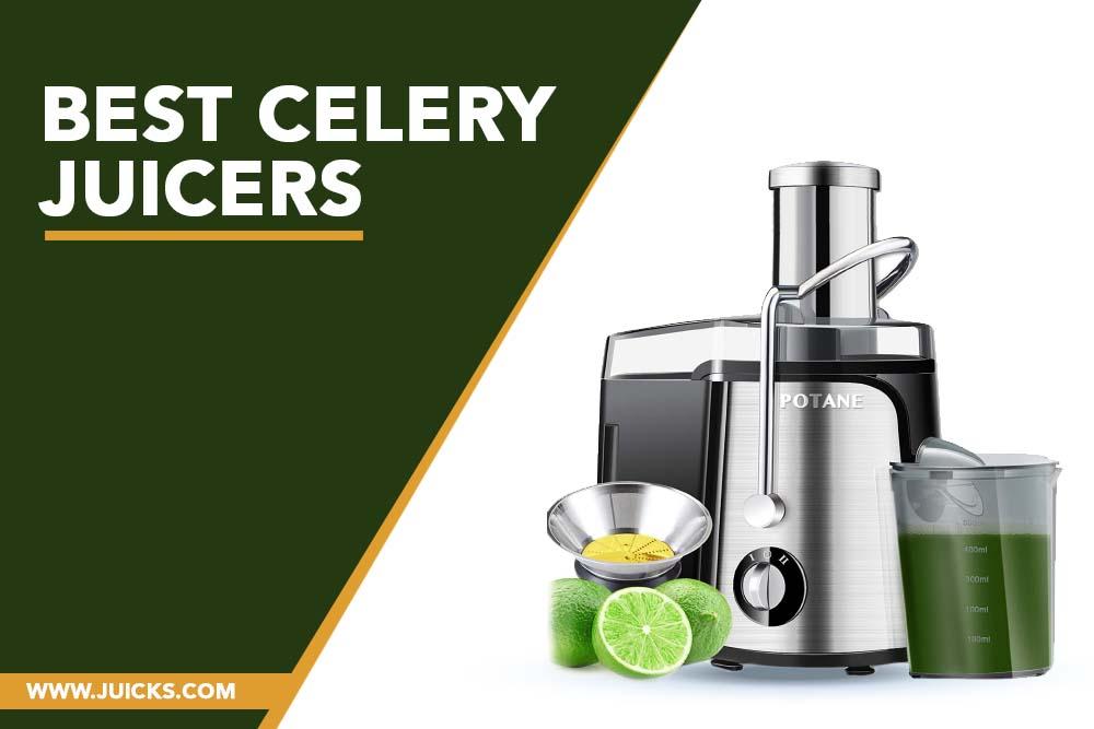 Best Celery Juicers