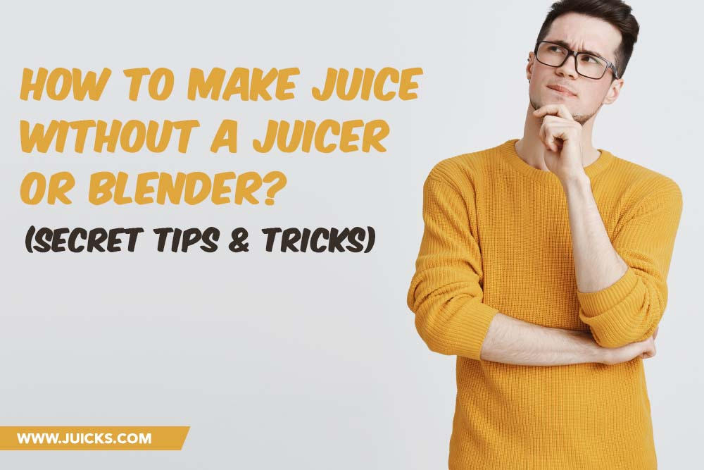how to make a juicer without a juicer